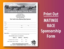 Matinee Sponsorships
