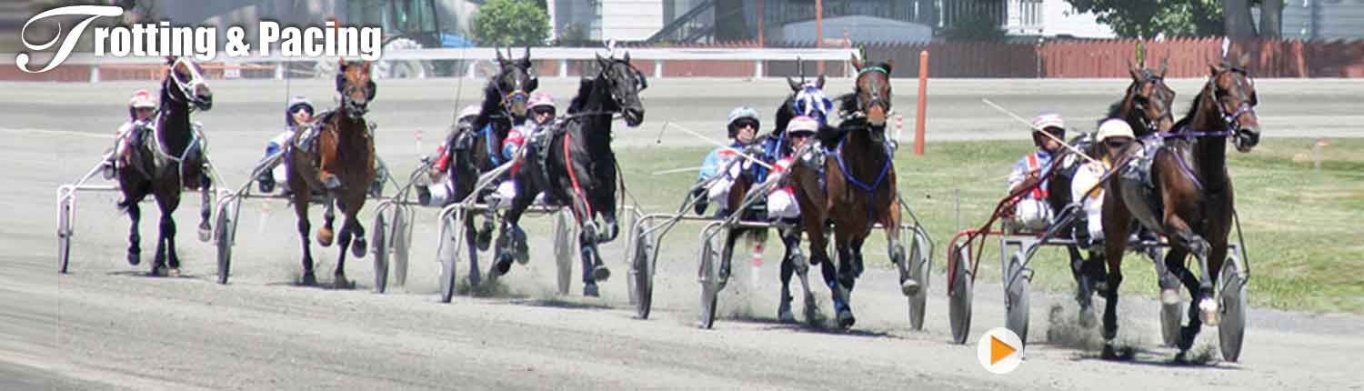 Harness Racing at Goshen Historic Track