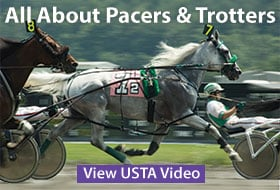 Pacer or Trotter